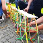 bridge project_gra szkoleniowa